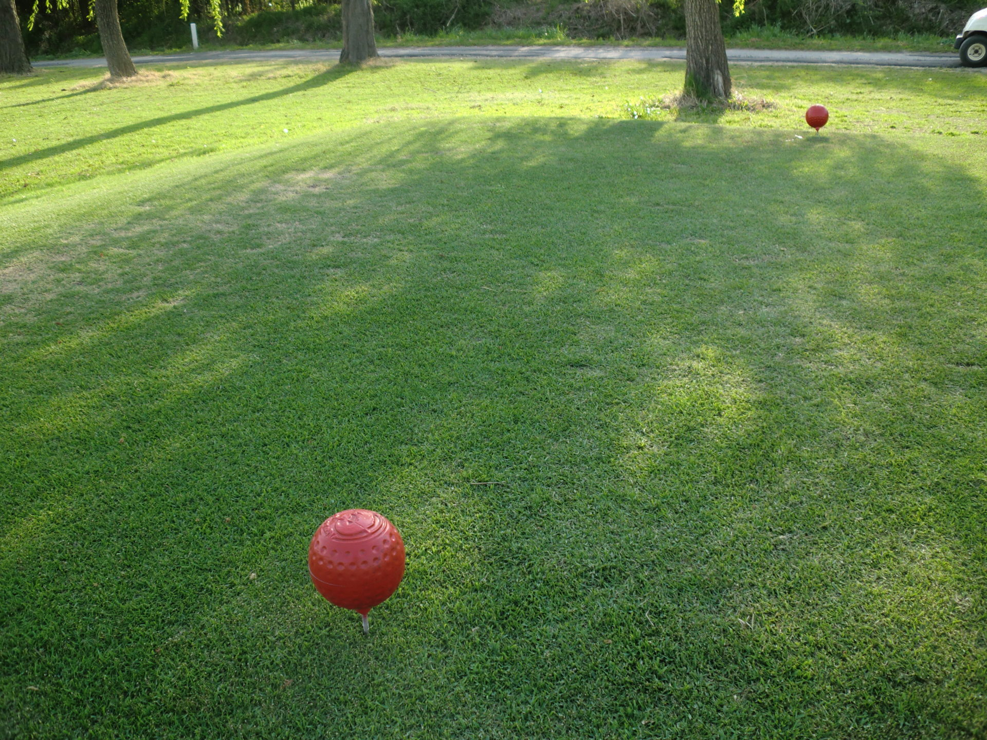 ゴルフ場のレディースティ―