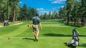 ゴルフ ゴルファー