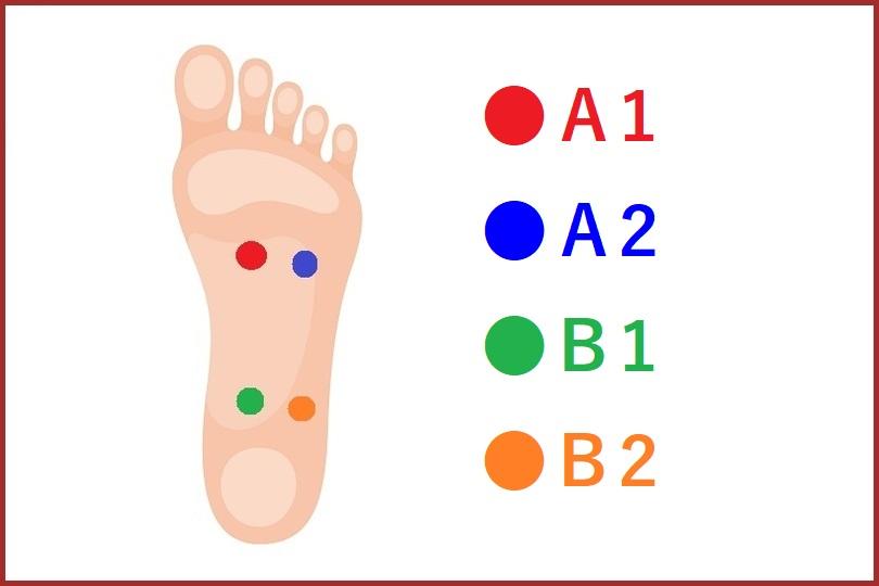 4スタンス理論タイプ重心位置