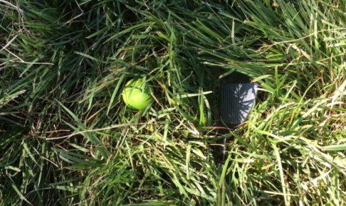 狭山ゴルフクラブのラフ